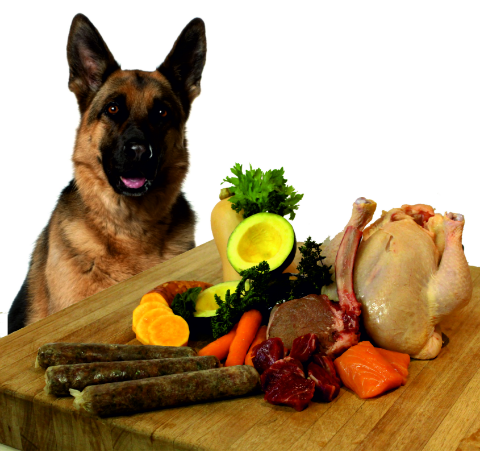Chefs4Pets|Dog With Raw Food 2