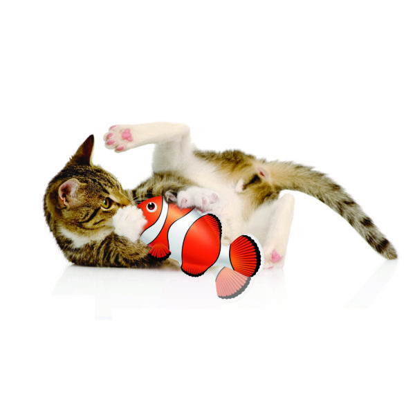 Cat Playing with Clown Fish| zaFish| Chefs4Pets